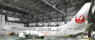お披露目されたJTAの「空手発祥の地 沖縄」新デザイン機(空手ジェット)=7日午前、那覇空港