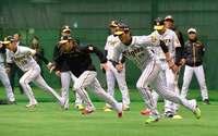 ファン、待ってました! 沖縄県内でプロ野球キャンプイン