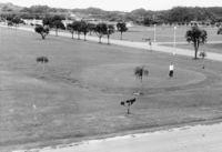 【沖縄とCIA ロバート・ジャクソン回顧録】(1)アジア謀略作戦の拠点 森に隠れ家、特殊訓練も