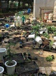 何者かに荒らされ散乱した植木鉢=20日、浦添市内の中学校(読者提供)