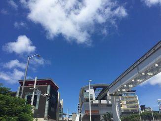 台風が過ぎ、一気に夏の空に戻りました。