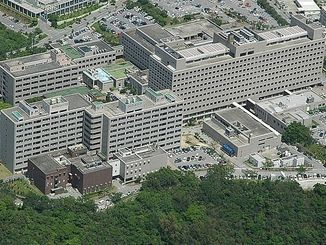 琉球大学医学部(資料写真)