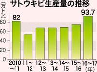 サトウキビ生産、17年ぶり90万トンを超え 前期比24%増加