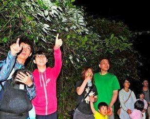 クメジマボタルの乱舞に歓声を上げる参加者=4月21日、町仲村渠のミーフガー