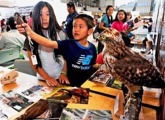 沖縄に飛来してくる渡り鳥の剥製を手に興味津々