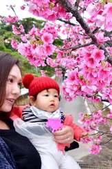 桜の花びらに見入る親子=27日