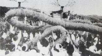 1958年ごろ、最盛期だったという世名城の綱引き。直径30センチ、長さ30メートルと伝わる綱に何十人もの男が群がり、時に殴り合うこともあった(世名城老人クラブ創立40周年記念誌より)