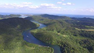 沖縄県内最長の19キロを誇る浦内川には、国内最多407種の魚類が生息。大河の恵みが西表島の希少種・固有種を守り育む(2017年、小型無人機で撮影)