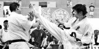 [スポーツひろば]/空手道/藤原、一般男子上級V/■第1回県錬成大会
