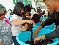 モズクを取ろう!食べよう! 沖縄・うるま市で消費拡大イベント