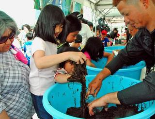 たくさんのモズクをつかんで袋に入れる子どもたち=16日午前、うるま市勝連・平敷屋漁港