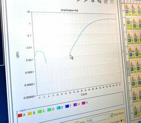 新型コロナウイルスの検査結果を示すモニター。グラフ右側のような増幅曲線を描けば陽性。家族が感染した男性は「検査数が十分かなどフォロー態勢の点検を続けてほしい」と訴えた=6月24日、うるま市・県衛生環境研究所