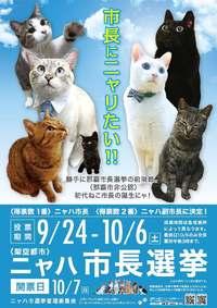 猫にも清き一票を! 「ニャハ市長選」告示 那覇市内の7匹が届け出