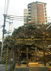 落石の危険性が高い県営嘉手納高層住宅下の崖。県有地だが、誰のものか分からない掘り込み墓があり対策が講じられずにきた=嘉手納町水釜