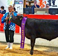 牛初競り最高額137万円/南部市場「品質は上々」/総額2億9644万円