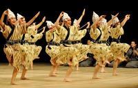 八重山と南風原、躍動の舞で全国大会へ 全九州高校総合文化祭・郷土芸能部門