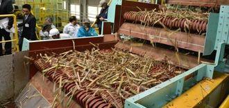 一括交付金で導入した集中脱葉機に見入る生産者や製糖関係者ら=石垣市名蔵、石垣島製糖