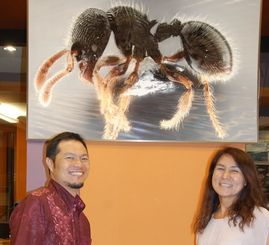 「OKEON美ら森プロジェクト」に取り組む吉村正志さん(左)と小笠原昌子さん=25日、恩納村の沖縄科学技術大学院大学