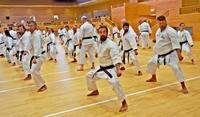 絆を深め型鍛錬 順道館開設65年大会 21カ国から200人