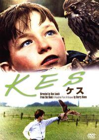 [あのころ、映画があった 必見の外国映画名作選](28)/ケス/庶民の実像 淡々と描く