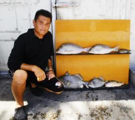 伊平屋島で49センチ、2.86キロのモンガラカワハギなどを釣った沖縄釣道會の当銘睦さん=8月27日