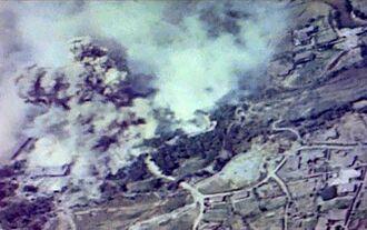 市民団体「豊の国宇佐市塾」が入手した、米軍機の空襲を受けて煙に包まれる首里城の映像(同団体提供)