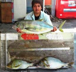中城海岸で89.5センチ、6.5キロのガーラと65センチ、2.99キロのタマンを釣った諸見里匠仁さん=4月26日