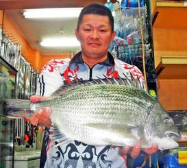 与那原海岸で51.1センチ、2.35キロのチンシラーを釣った大城良さん=2月24日