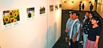 「私の一点」写真展 那覇市久茂地のタイムスギャラリー(沖縄タイムス本社・タイムスビル2階)で開催中です。20日まで。