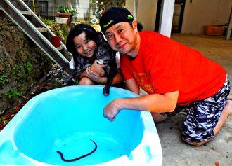 学童の庭先でタウナギを見つけた新里尚也さん(右)と娘の梨未さん=2日、北中城村安谷屋・大空子どもくらぶ