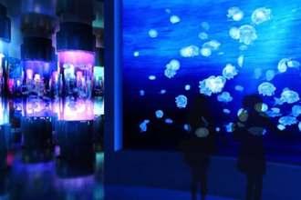 クラゲが光る幻想的な空間のイメージ(DMM.com提供)