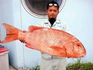 伊是名一文字で85センチ、10.3キロのイヌバーを釣った内間勇稀さん=2日