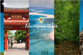 県が開設した国内観光客向けのキャンペーンウェブサイト「いのちにちからをくれる島。」