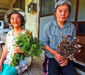 「かつては伊豆味で虫よけとして重宝した。私は今でも使っています」と話す高山啓子さん(右)と高山セツさん=本部町伊豆味