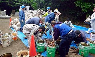 バケツに回収したごみを分別する県の職員やボランティア=27日、糸満市摩文仁・平和祈念公園内