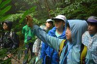 与那覇岳を歩き、やんばるの生物観察 沖縄こども環境調査隊