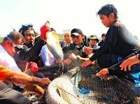 大漁50キロとったどー 小中生が追い込み漁、沖縄・久高島