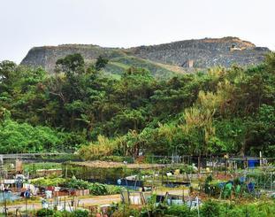 倉敷環境が積み上げたごみ山(後方)=11月10日、沖縄市池原