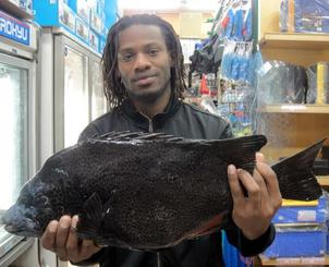 残波海岸で60センチ、4・3キロのガラサーミーバイを釣ったディクソン・アンティワンさん=1月28日