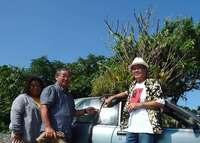 ガジュマル載せ、都市伝説にもなった車「ジャングルカー」 古宇利島に根を下ろす