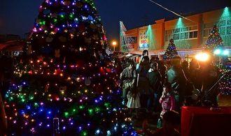 色鮮やかな光を放つ大きなツリーが並ぶ会場=沖縄市胡屋・沖縄こどもの国