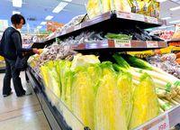 鍋の季節 野菜高騰/昨年の台風や低温影響/県内小売りの葉物 通常の2〜4倍に