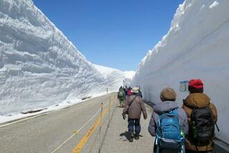全線開通した立山黒部アルペンルートの雪壁の間を歩く人たち=15日午前、富山県立山町