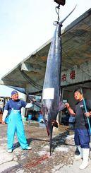 沖合の大型定置網にかかり、水揚げされた350キロのシロカワカジキ=26日、読谷村の都屋漁港