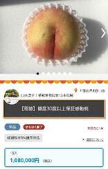 糖度31度超とされるモモが出品された産地直送ネット通販「ポケットマルシェ」のページ
