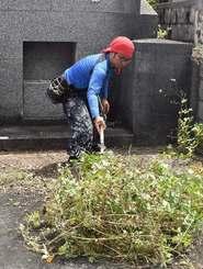高齢の知人に代わり、墓の掃除をする砂辺善人さん=4日、那覇市・識名霊園