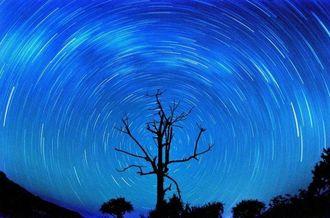 1時間の長時間露光で撮影した星の光跡=2日午前1時20分~2時20分、国頭郡国頭村楚洲の山中(ISO100、F8、1時間露光、吉直新一郎さん撮影)