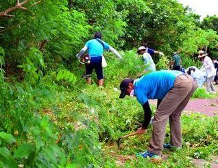 炎天下、生い茂る草を刈り取る参加者たち=25日、うるま市州崎
