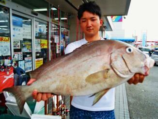 屋我地島で71.2センチ、4.26キロのコロダイを釣った新里航平さん=24日