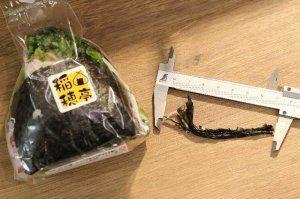 長さ約7センチの異物(右側)と、混入されていたおにぎりと同じ商品(購入した男性提供)